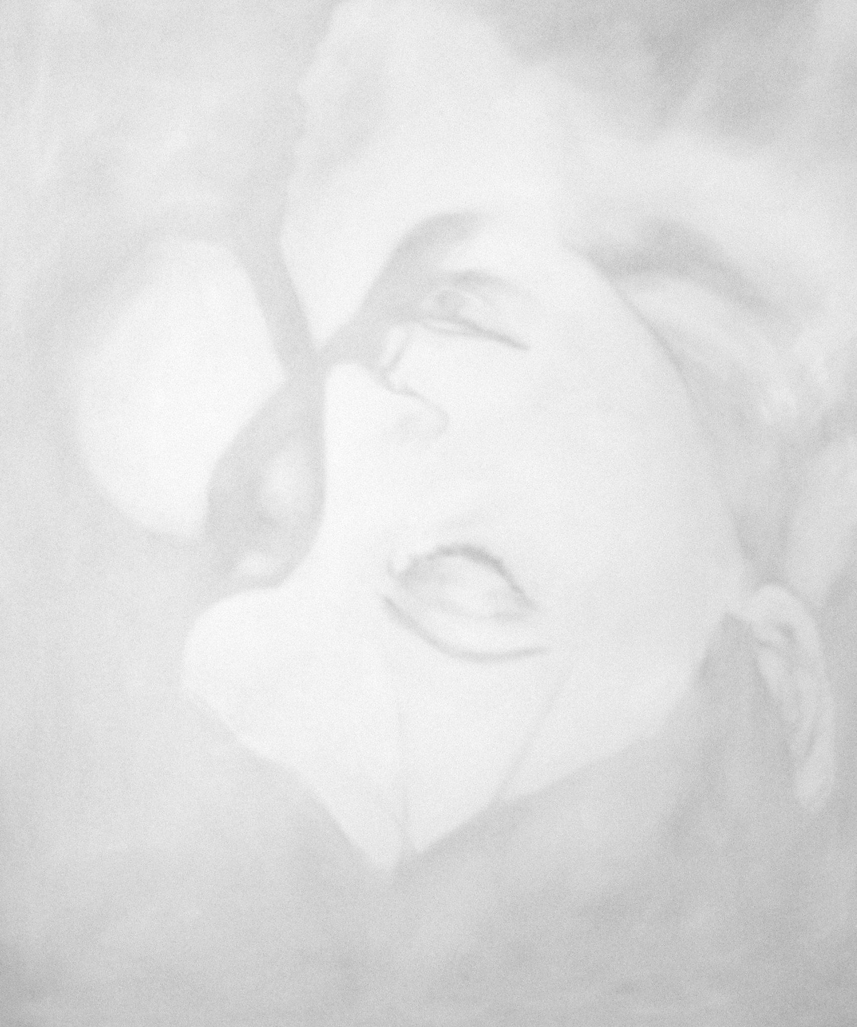 Portrait contemporain de femme à l'huile